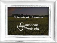 Someron Tilipalvelun kotisivut - toteutus DigiPuu